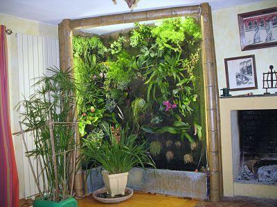Quelles orchid es sur mon mur v g tal - Fabriquer son mur vegetal ...